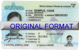 new brunswick driver license buy fake driver license new brunswick