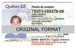 Quebec Driver License Format ID Cards Designs Templates Novelty Software Card Hologram id quebec canada